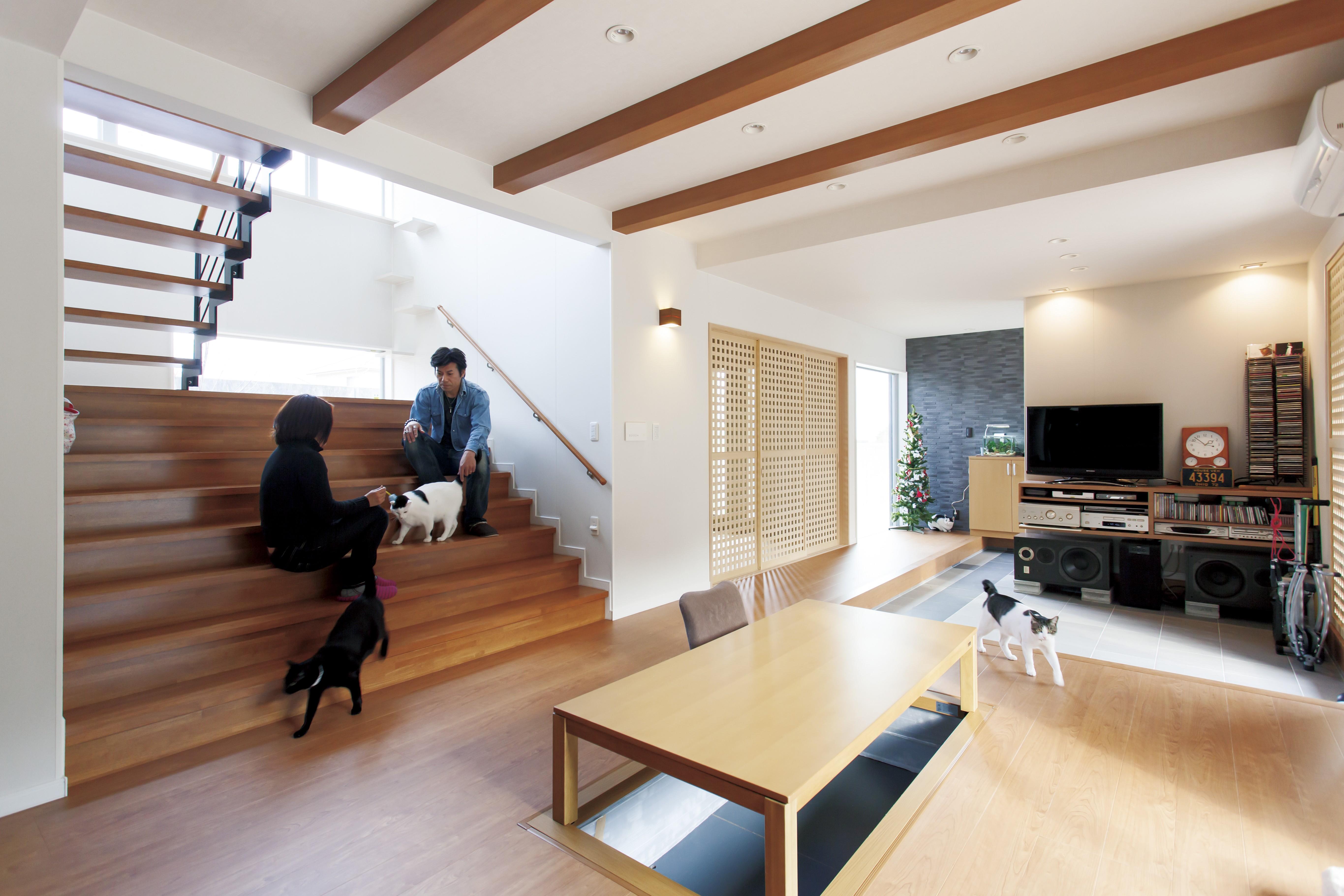 猫のために建てた家は人も楽しめる家に イメージ